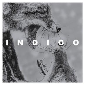 Indigo – IndigoEP